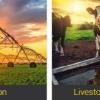 การเลือกปั๊มน้ำกับการเกษตร