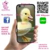 เคส ViVo Y53 ยางซิลิโคน ลูกเป็ดน่ารัก เคสสวย เคสโทรศัพท์ #1171