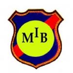 MIB นักสืบเอกชน