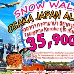 SNOW WALL OSAKA JAPAN ALPS TAKAYAMA 5Day 4Nights เม.ย - มิ.ย.60