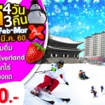 ทัวร์เกาหลี XJ Surprise Snow in Korea 4D3N on Feb - Mar'17 15,900