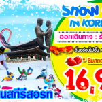 SNOW WINTER IN KOREA ธ.ค.59- ม.ค.60