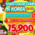 THREE COLOR LEAVES IN KOREA ต.ค-พ.ย 59