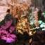 ฮานอย ฮาลอง ซาปา 5 วัน 4 คืน ส.ค.- ก.ย.59 thumbnail 10