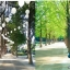 SPRING IN KOREA 5D3N มี.ค.61 thumbnail 3
