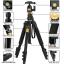 QZSD Tripod Monopod ขาตั้งกล้อง ทำเป็นขาเดี่ยวได้ รุ่น Q-555 thumbnail 5