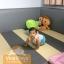คอกต่อเตียง คอกกั้นเด็ก Viva Playz ขอบคุณลูกค้ามากๆค่ะ thumbnail 1