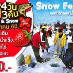 Surprise Ice Fishing & Snow in Korea 4 D 3N on Jan'17 ( XJ) มกราคม 2560