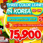 THREE COLOR LEAVES IN KOREA