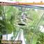 โคมไฟเสา+ปักสนาม เสา1.4เมตร (แสงขาว) thumbnail 6