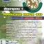 แนวข้อสอบ พัฒนาชุมชน 1 ท้องถิ่น อบต เทศบาล อบจ. thumbnail 1
